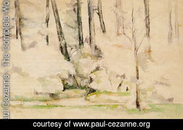 Paul Cezanne - Into The Woods