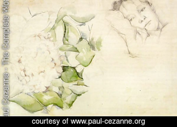 Paul Cezanne - Madame Cezanne (Hortense Fiquet) With Hortensias