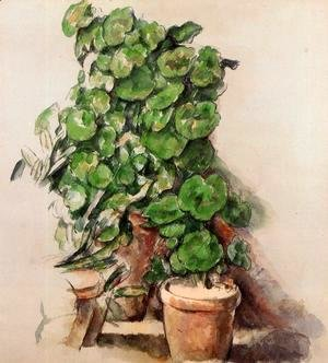 Paul Cezanne - Pots Of Geraniums